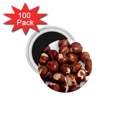 Hazelnuts 1 75  Button Magnet (100 Pack) by hlehnerer