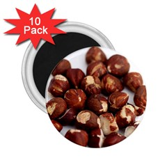 Hazelnuts 2 25  Button Magnet (10 Pack) by hlehnerer