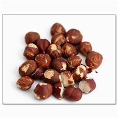 Hazelnuts Canvas 11  X 14  9 (unframed) by hlehnerer
