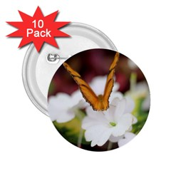 Butterfly 159 2 25  Button (10 Pack) by pictureperfectphotography