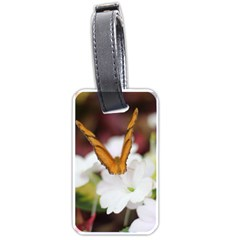 Butterfly 159 Luggage Tag (two Sides) by pictureperfectphotography