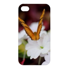 Butterfly 159 Apple Iphone 4/4s Premium Hardshell Case by pictureperfectphotography