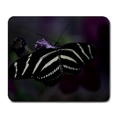 Butterfly 059 001 Large Mouse Pad (rectangle) by pictureperfectphotography