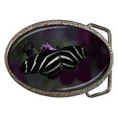 Butterfly 059 001 Belt Buckle (oval)