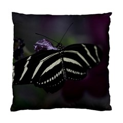Butterfly 059 001 Cushion Case (one Side) by pictureperfectphotography