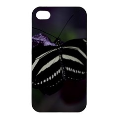 Butterfly 059 001 Apple Iphone 4/4s Premium Hardshell Case by pictureperfectphotography