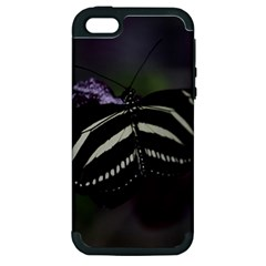 Butterfly 059 001 Apple Iphone 5 Hardshell Case (pc+silicone) by pictureperfectphotography