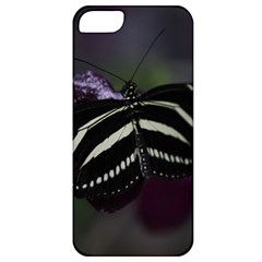 Butterfly 059 001 Apple Iphone 5 Classic Hardshell Case by pictureperfectphotography