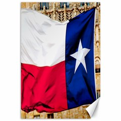 Texas Canvas 12  X 18  (unframed) by dray6389