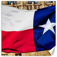 Texas Canvas 16  X 16  (unframed) by dray6389
