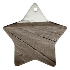 Laguna Beach Walk Star Ornament (two Sides) by hlehnerer