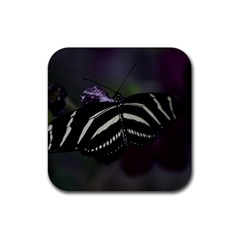 Butterfly 059 001 Drink Coasters 4 Pack (square)
