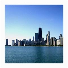 Chicago Skyline Glasses Cloth (medium) by canvasngiftshop