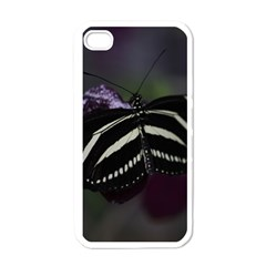 Butterfly 059 001 Apple Iphone 4 Case (white) by pictureperfectphotography