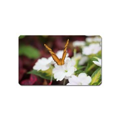 Butterfly 159 Magnet (name Card) by pictureperfectphotography