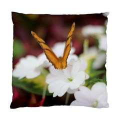 Butterfly 159 Cushion Case (one Side) by pictureperfectphotography