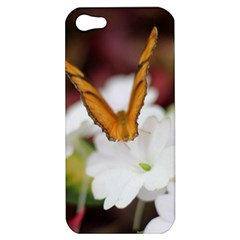 Butterfly 159 Apple Iphone 5 Hardshell Case by pictureperfectphotography
