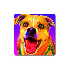 Happy Dog Magnet (square) by cutepetshop