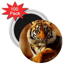 Tiger 2 25  Button Magnet (100 Pack) by cutepetshop
