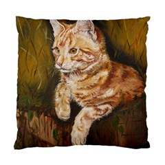 Cute Cat Cushion Case (two Sides) by cutepetshop