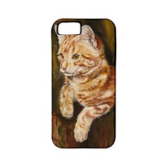 Cute Cat Apple Iphone 5 Classic Hardshell Case (pc+silicone) by cutepetshop