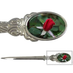 Sallys Flowers 032 001 Letter Opener by pictureperfectphotography
