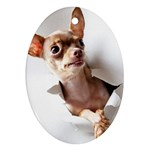 Chihuahua Oval Ornament