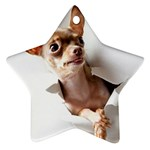 Chihuahua Star Ornament
