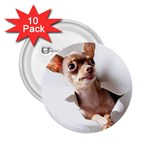 Chihuahua 2.25  Button (10 pack)