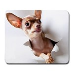 Chihuahua Large Mouse Pad (Rectangle)