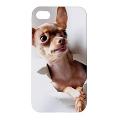 Chihuahua Apple Iphone 4/4s Hardshell Case