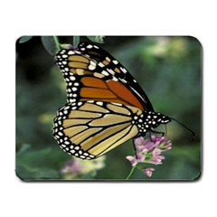 Mousepad-BUTTERFLY-MONARCH Small Mousepad by yourdezignz