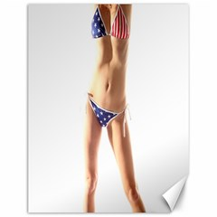 Usa Girl Canvas 12  X 16  (unframed) by hlehnerer