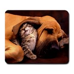 Cat_and_Dog_-_the_Best_Friend Large Mousepad