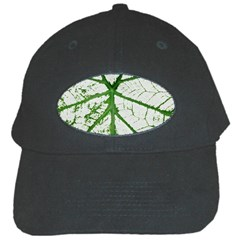 Leaf Patterns Black Baseball Cap by natureinmalaysia