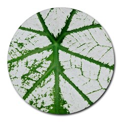 Leaf Patterns 8  Mouse Pad (round) by natureinmalaysia