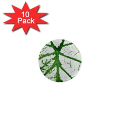 Leaf Patterns 1  Mini Button Magnet (10 Pack) by natureinmalaysia