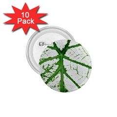 Leaf Patterns 1 75  Button (10 Pack) by natureinmalaysia