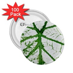 Leaf Patterns 2 25  Button (100 Pack) by natureinmalaysia