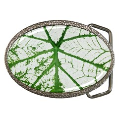 Leaf Patterns Belt Buckle (oval) by natureinmalaysia