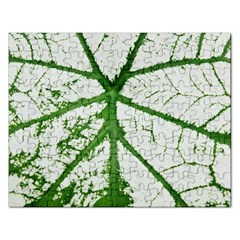 Leaf Patterns Jigsaw Puzzle (rectangle) by natureinmalaysia