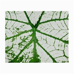 Leaf Patterns Glasses Cloth (small) by natureinmalaysia