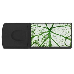 Leaf Patterns 4gb Usb Flash Drive (rectangle) by natureinmalaysia