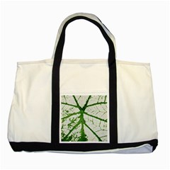 Leaf Patterns Two Toned Tote Bag