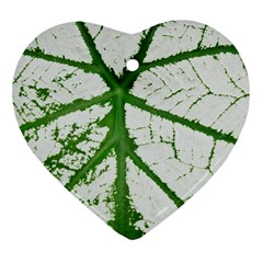 Leaf Patterns Heart Ornament (two Sides) by natureinmalaysia