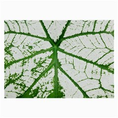 Leaf Patterns Glasses Cloth (large) by natureinmalaysia