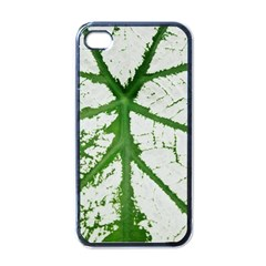 Leaf Patterns Apple Iphone 4 Case (black) by natureinmalaysia