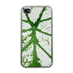Leaf Patterns Apple Iphone 4 Case (clear) by natureinmalaysia