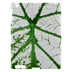 Leaf Patterns Apple Ipad 3/4 Hardshell Case by natureinmalaysia