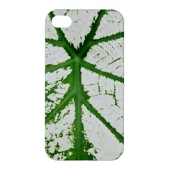 Leaf Patterns Apple Iphone 4/4s Premium Hardshell Case by natureinmalaysia